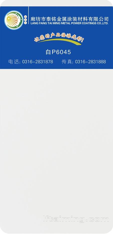 117-白P6045 副本
