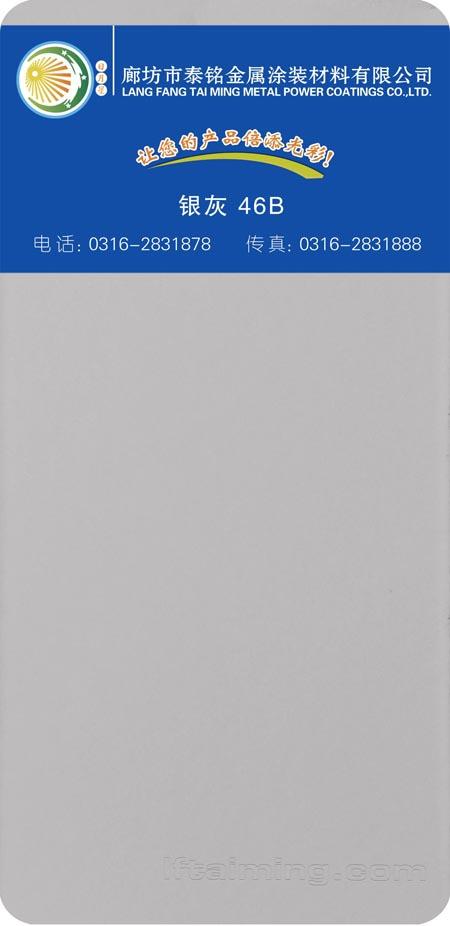209-銀灰 46B 副本