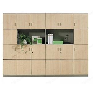 木制书柜 档案资料玻璃书柜