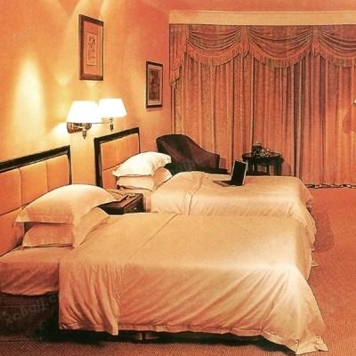 高档酒店宾馆家居新款标间套房04