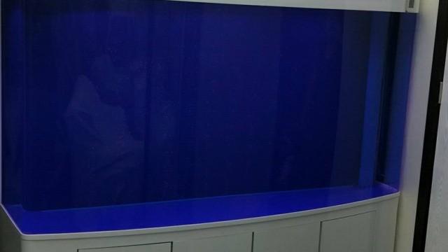 蓝龙水族箱 (3播放)