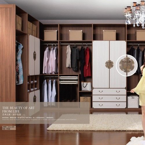 卧室衣柜定制家具双饰