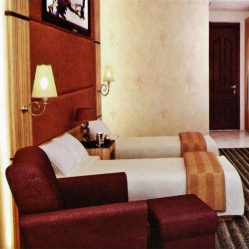 酒店宾馆标准间套房家