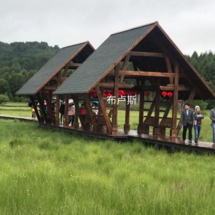 香河布卢斯户外休闲家具实木秋千摇椅长廊亭子定制厂家直销碳化木