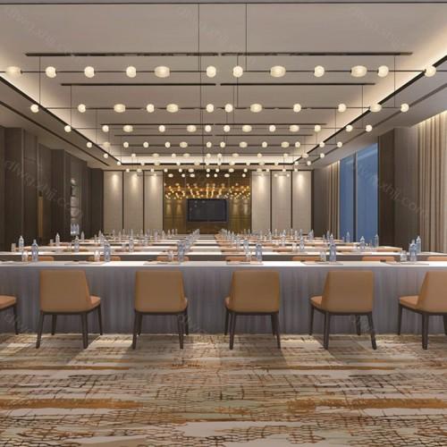 会议大厅区域地毯3U1676G01