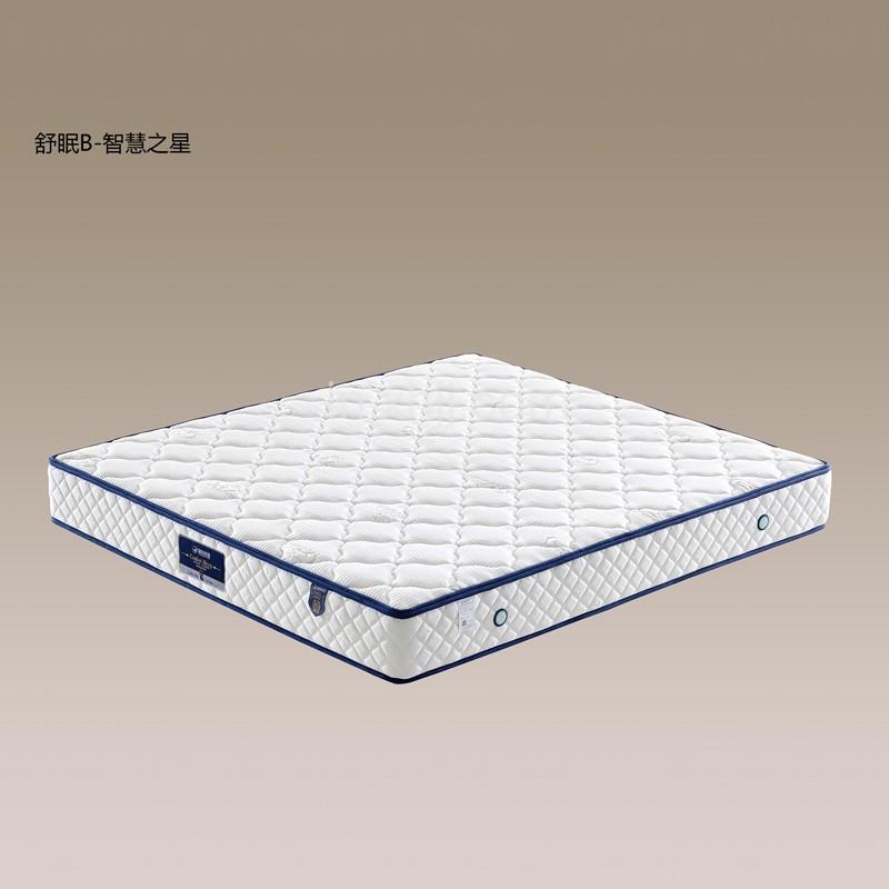 酒店专用弹簧床垫批发 双人床床垫厂家 13#