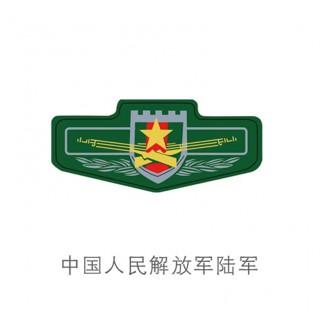 中国人民解放军陆军 (1)
