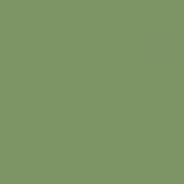 深绿色板 10