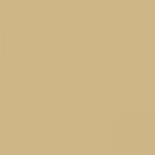 进口高光色板 PET-JK-0569
