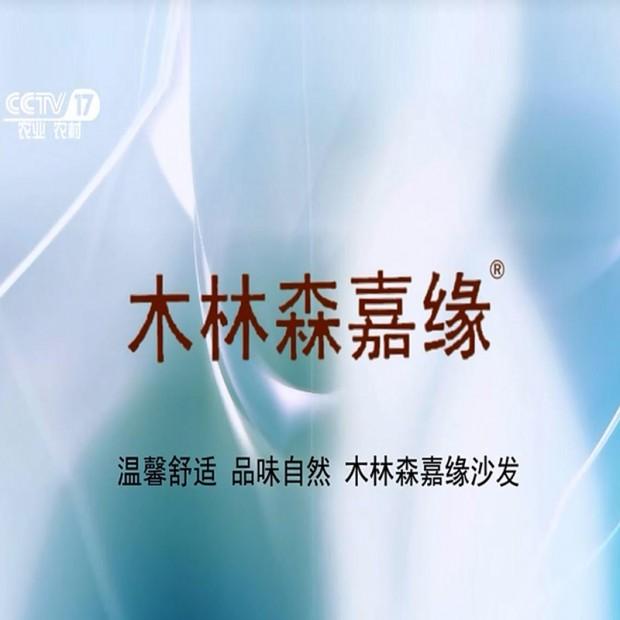 木林森嘉缘品牌休闲沙发 (46播放)
