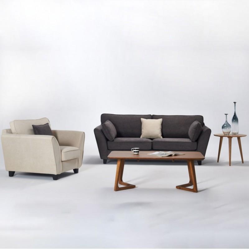 两室一厅软体家具客厅沙发套深色浅色套沙发组合