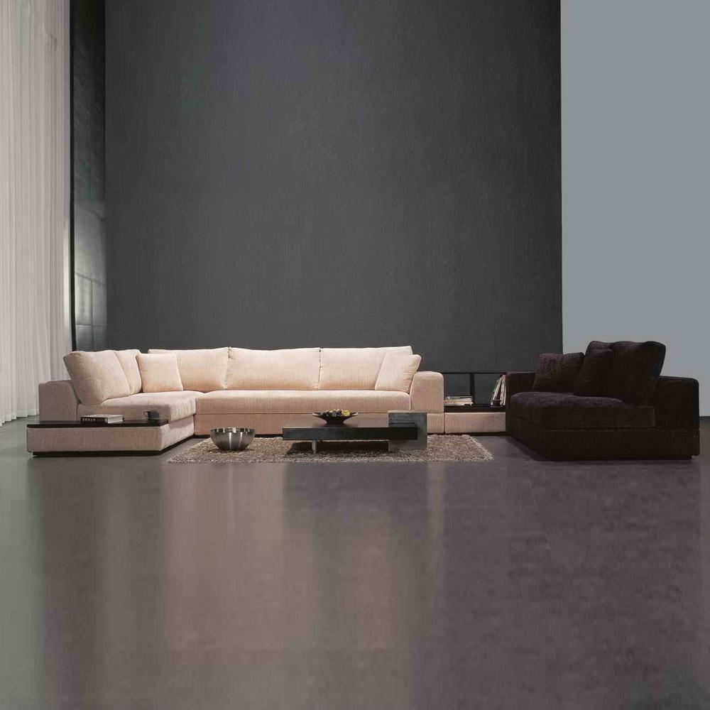 FB111  时尚极简客厅组合沙发