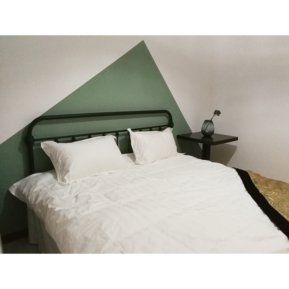 360民宿两室一厅大型房