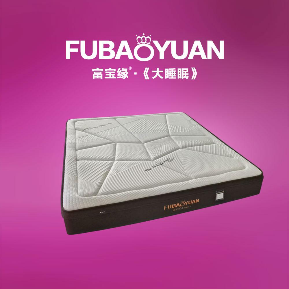 F3-11 茶多酚高端床垫