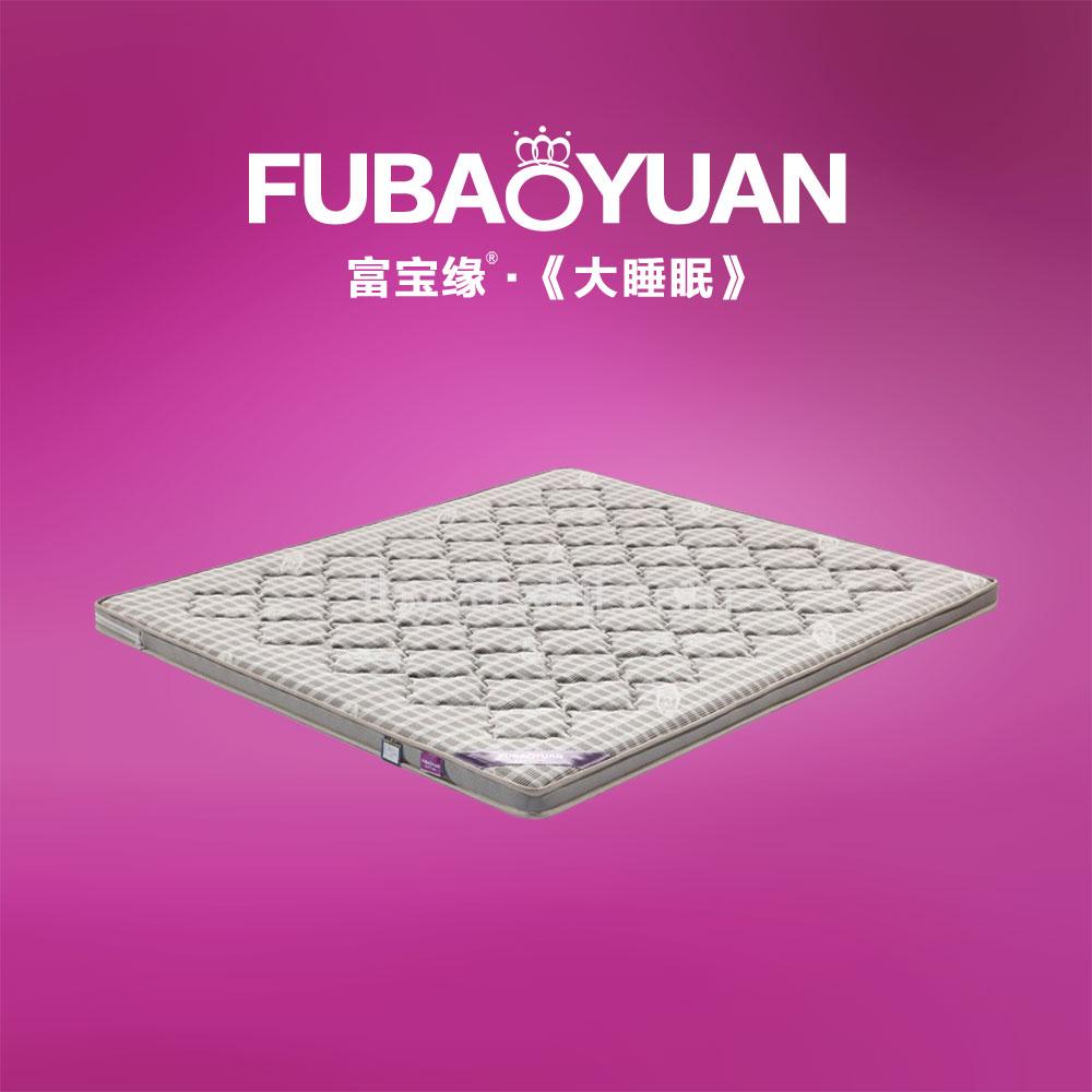 高档床垫 5分环保棕 反面凉席 F2-2素雅