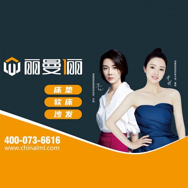 第45届国际名家具(东莞)展览会 (15播放)